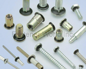 NYPLAS(TAIWAN SELF-LOCKING FASTENERS IND CO., LTD. (TSLG))