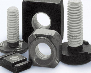 NYCOTE(TAIWAN SELF-LOCKING FASTENERS IND CO., LTD. (TSLG))