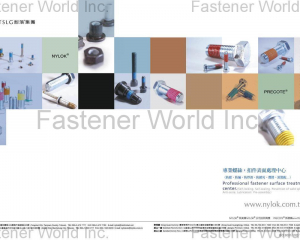 NYLOK(TAIWAN SELF-LOCKING FASTENERS IND CO., LTD. (TSLG))