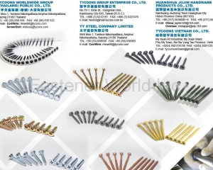 All Kinds of Screws(TYCOONS GROUP ENTERPRISE CO., LTD. )
