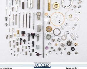 Special Fasteners(TIGGES TAIWAN)